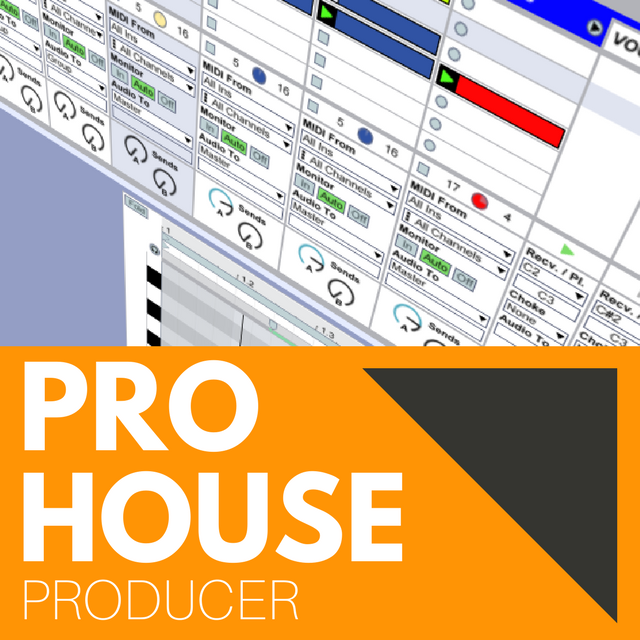 PRO HOUSE PRODUCER